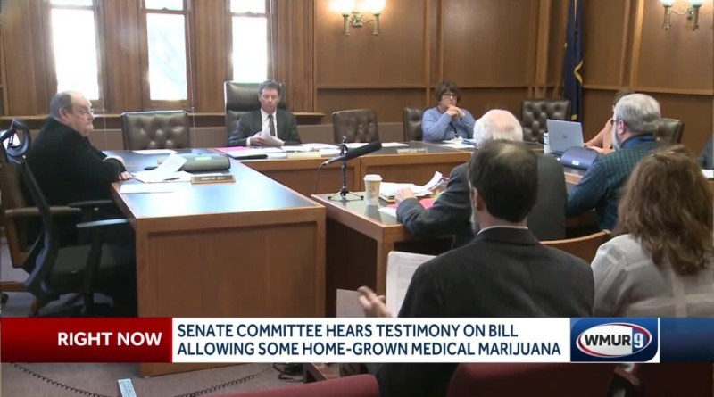 Senate committee hears testimony on bill allowing some home-grown medical marijuana