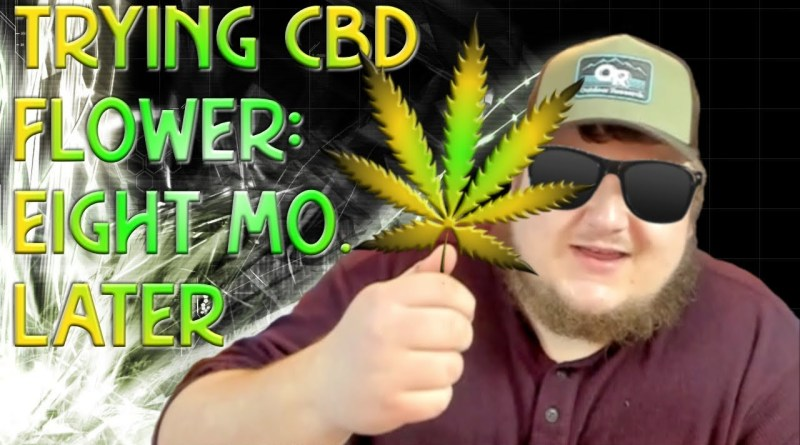 TRYING CBD HEMP FLOWER (8 MONTHS LATER):  Effects of Hemp vs. 'Marijuana' & More!