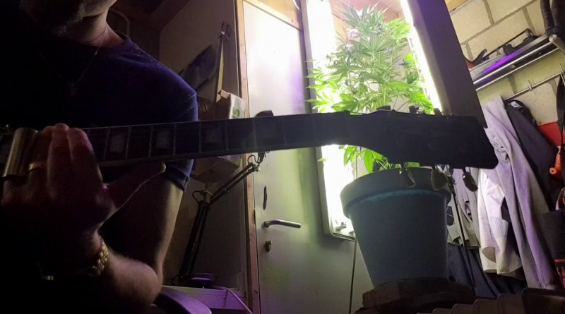 Take a hit and let it slide # cannabis slide guitar