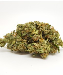 Buy Northern Lights Marijuana Strain