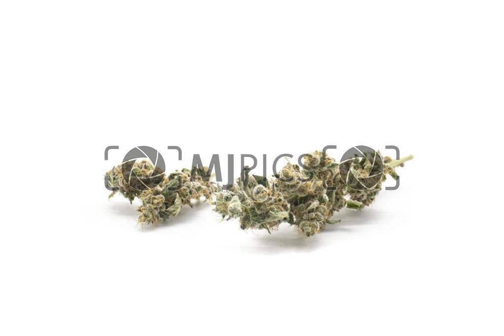 Grape Ape 10001169