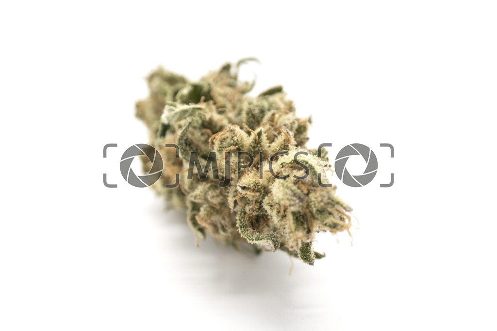 Strawberry Cough 10001203