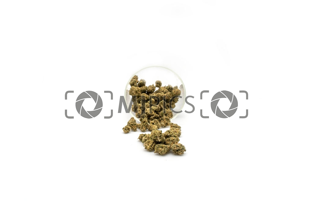 Lemon Mints 10001457