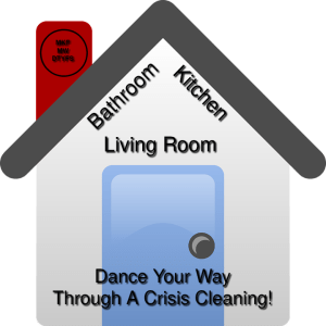 crisis cleaning your home 31217