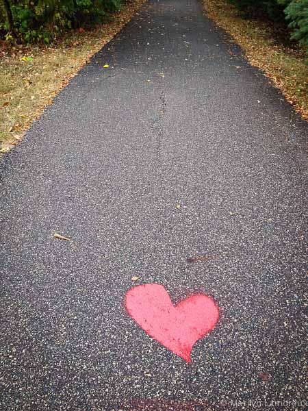 Photo-Heart Connection: Still Following My Heart
