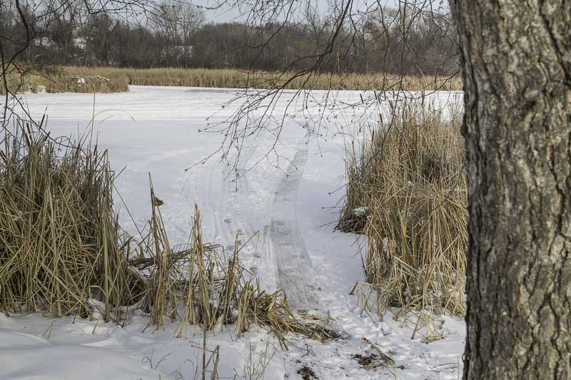 Skiers created trails to the lake