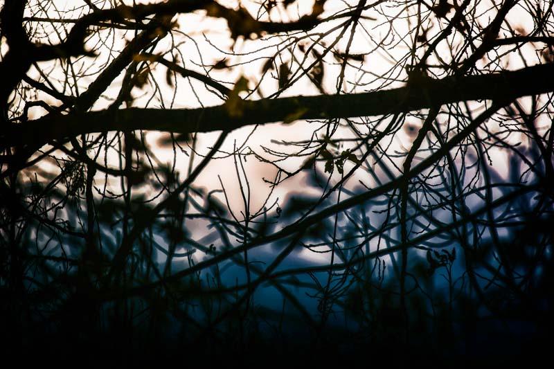 Darkness Shining in Bleak November