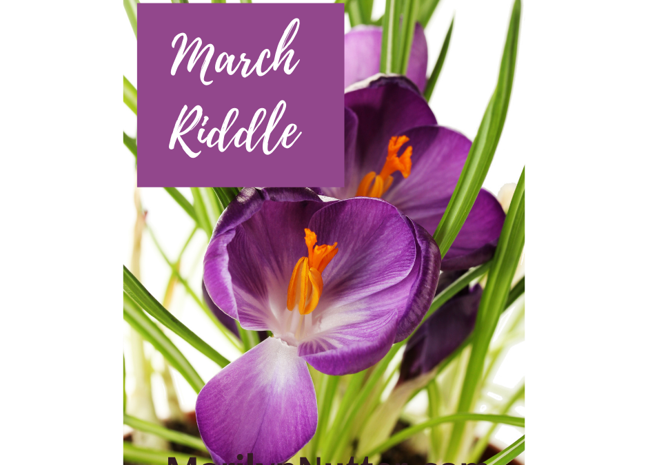 March: From Riddles to Growth