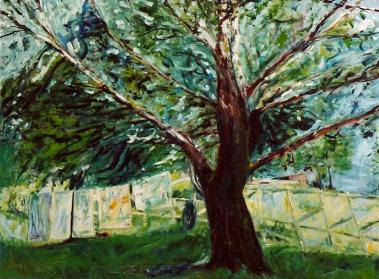 The Cottonwood Tree 30x40