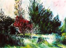 The Red Tree in Spring 30x40