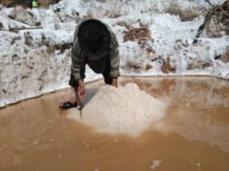 Salt collectors