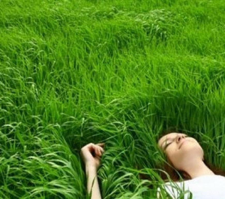 ΦΥΣΗ ΦΆΡΜΑΚΟ ΑΣΘΕΝΕΙΕΣ ΑΡΡΩΣΤΙΕΣ, διαβήτης τύπου 2, καρδιαγγειακά νοσήματα, πρόωρο θάνατο, πρόωρη γέννα, καλύτερο ύπνο, άγχος, υψηλή αρτηριακή πίεση.