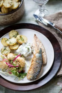 Skindstegt makrel med agurke-dild cream