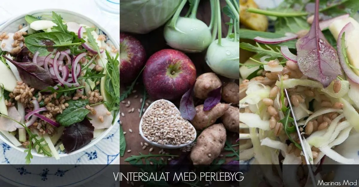 Opskrift på salat med perlebyg