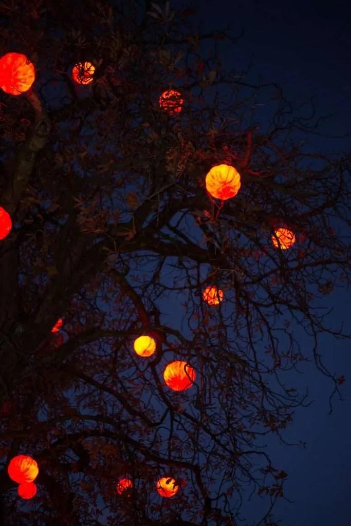 Træ med græskar lygter i Tivoli