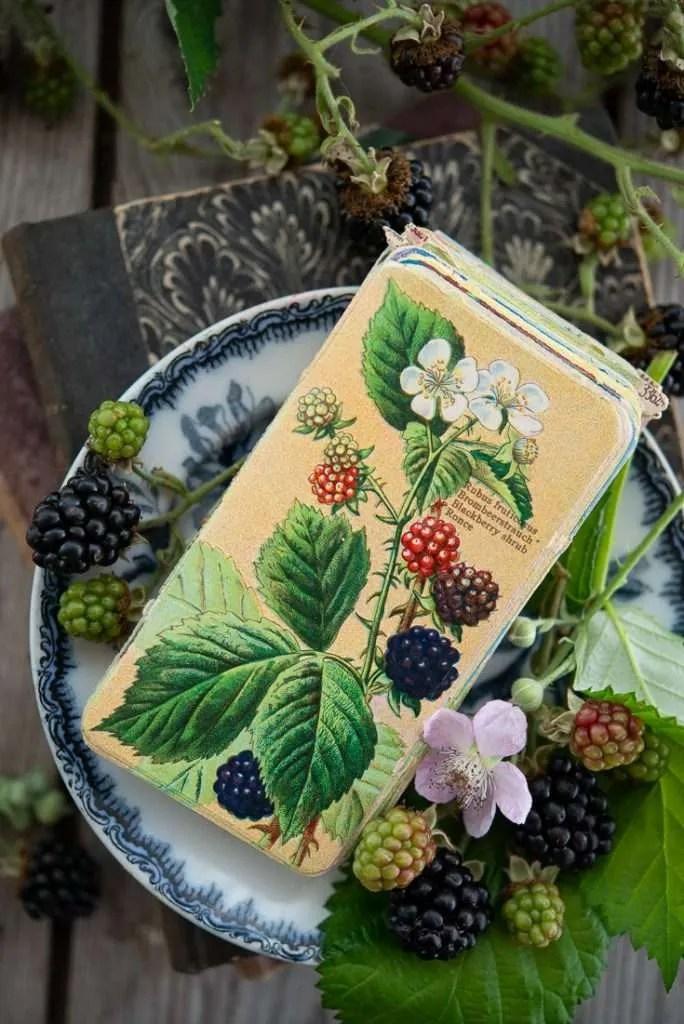Et gammelt glasbillede omgivet af brombær. Brombær er nemlig en stjerne i det tidlige efterårs madlavning