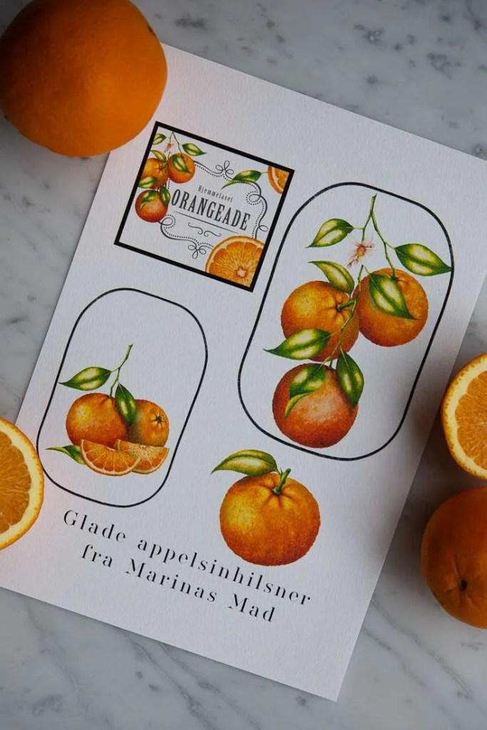 Appelsin etiketter til udskrift