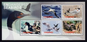 new-zealand-2014-endangered-seabirds-mini