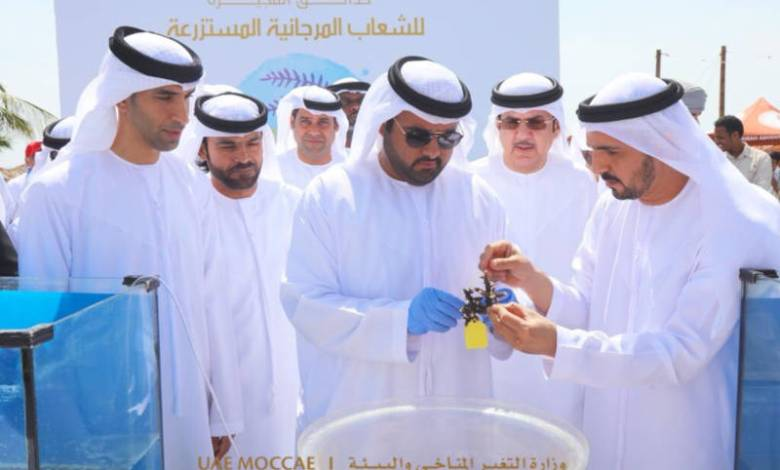 Coral reef garden project in UAE