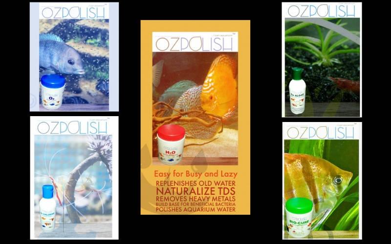 Aquatic Habitat, The newest Indian company with OZpolish