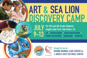 ART AND SEA LION DISCOVERY CAMP
