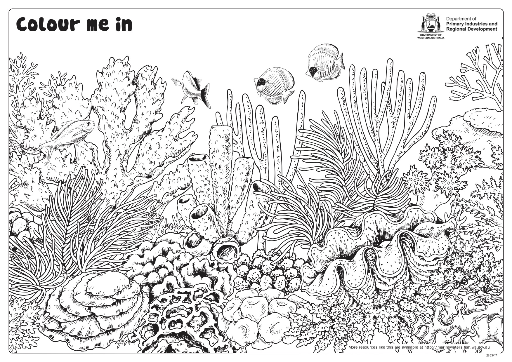 Fishy Fun Sheet Coral Reef With Giant Clam