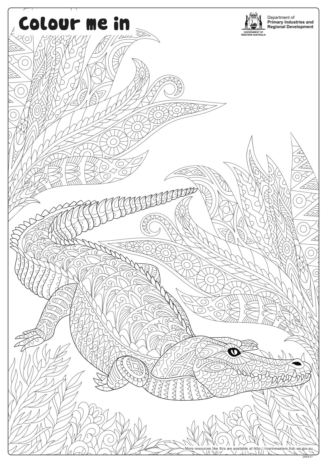 Fishy Fun Sheet Crocodile