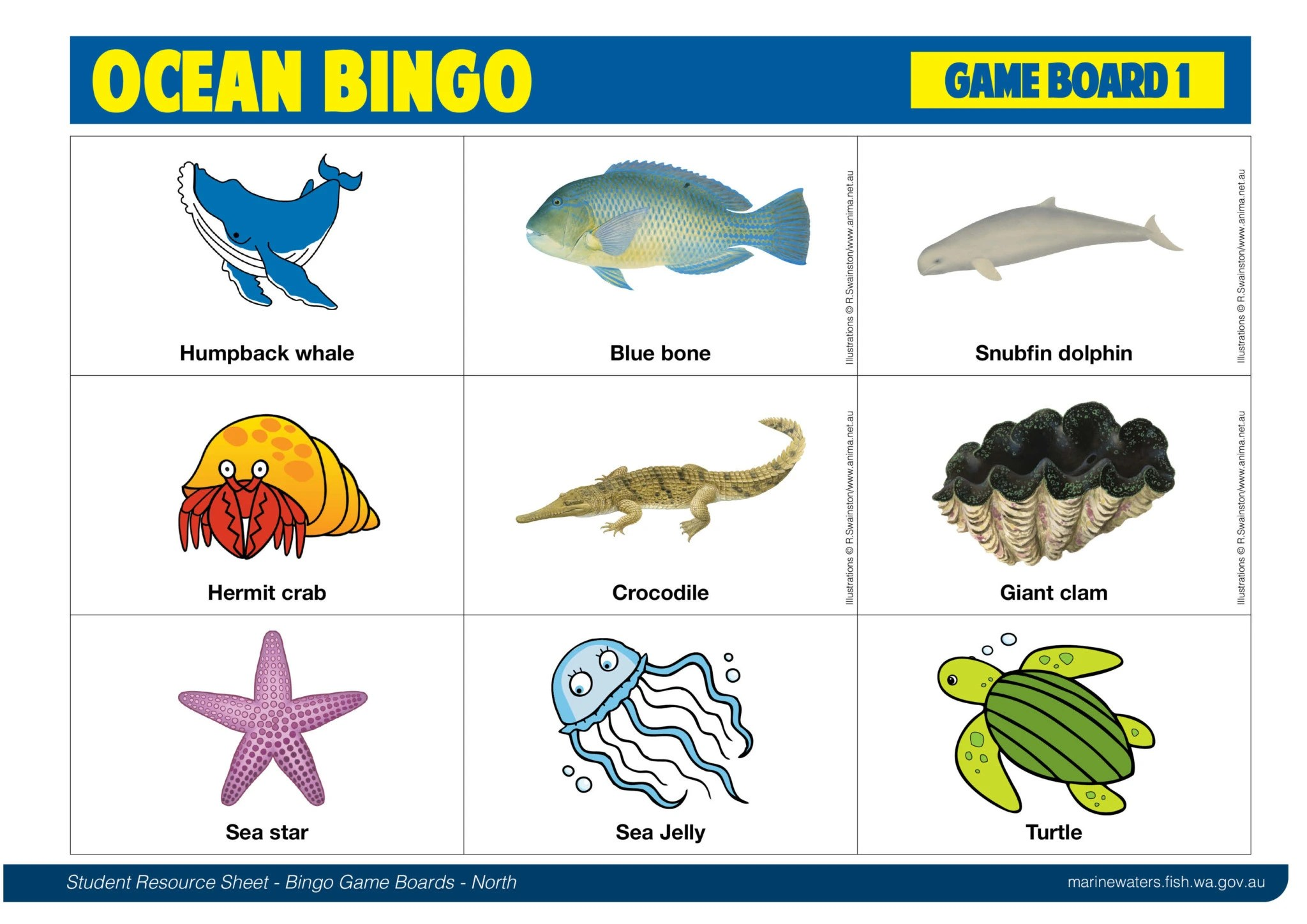 Student Resource Sheet Bingo Game Boards