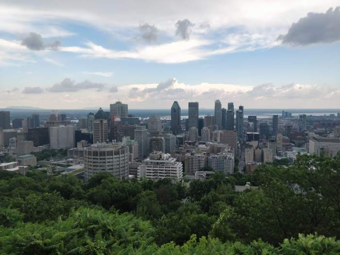 View from the Mount Royal