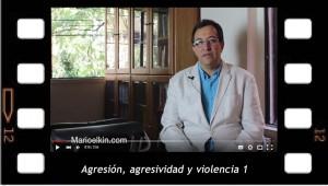 Agresión, agresividad y violencia en psicoanálisis 1