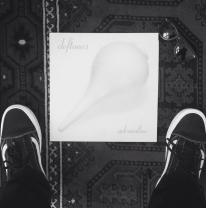 Steven Vogel, Instagram account