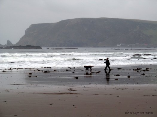 Got some great reference photos of walking a dog on a beach