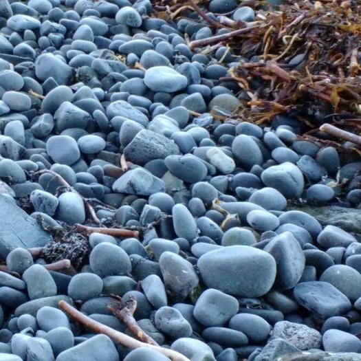 Frosty! Beach pebbles