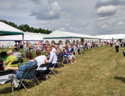 Sunshine at Patchings