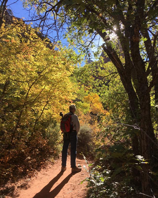 Zion, National, Park, Utah, sunshine, hiking