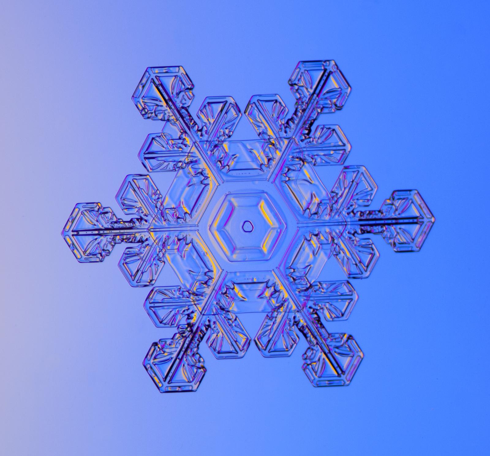 Snow, snowflake, snow crystal, real snowflake, snowflake photography