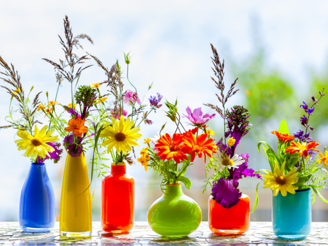 flowers, vases, garden, herbs
