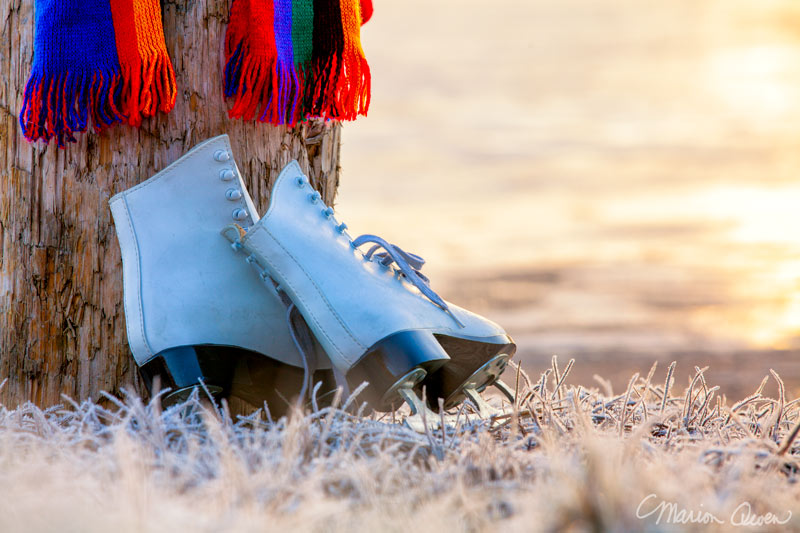 ice skates, frost, lake