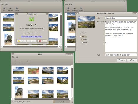 Frogr 0.1 screenshots