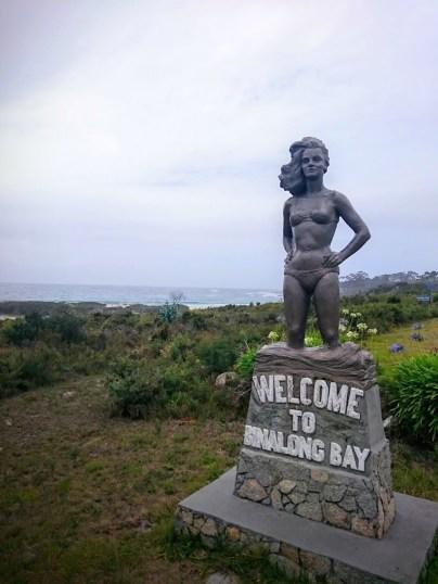 Welcome to Binalong Bay