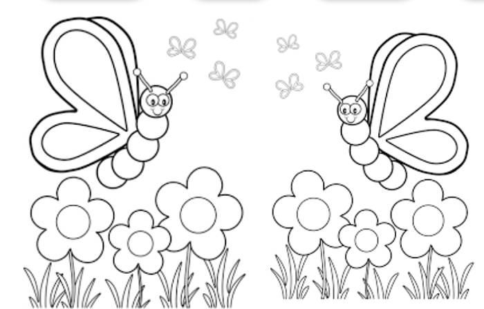 Mariposas para Colorear con los Niños de la Casa (Dibujos)