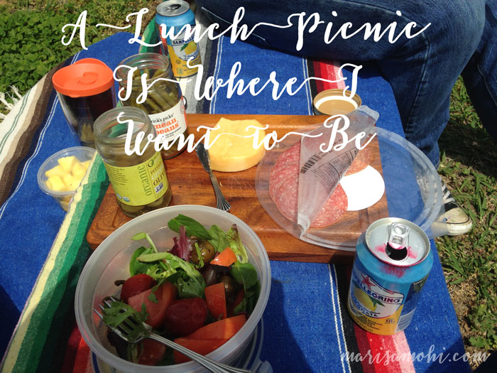A Lunch Picnic Is Where I Want to Be