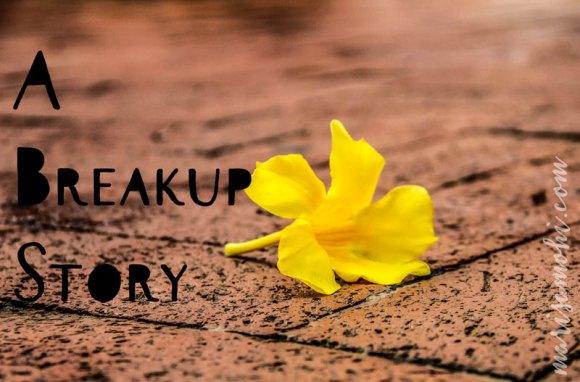 A Breakup Story
