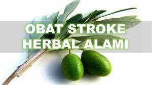 terapi stroke mandiri
