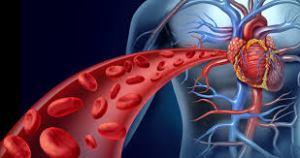 Ilustrasi sel darah merah di dalam tubuh
