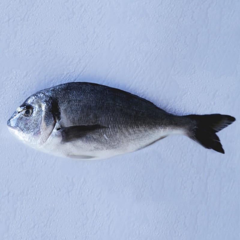 Dorada Cultivo  pescado fresco a domicilio