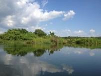 The River NIle, Jinja, Uganda - December 2012