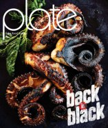 Plate_Burnt_Cover