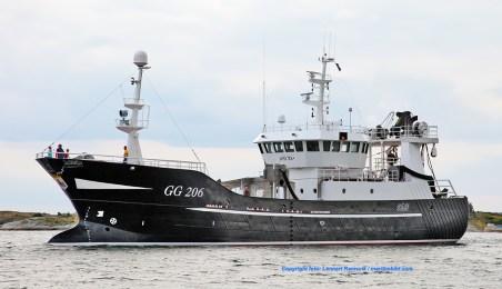 GG 206 Ahlma