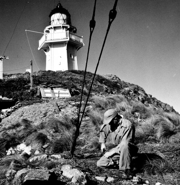 A rigger attaches an insulator to an aerial wire before climbing one of the radio masts at Brothers Island lighthouse